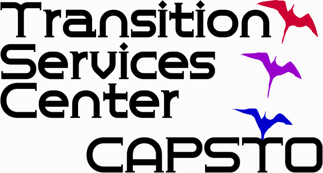 Image result for capsto transitions iowa city